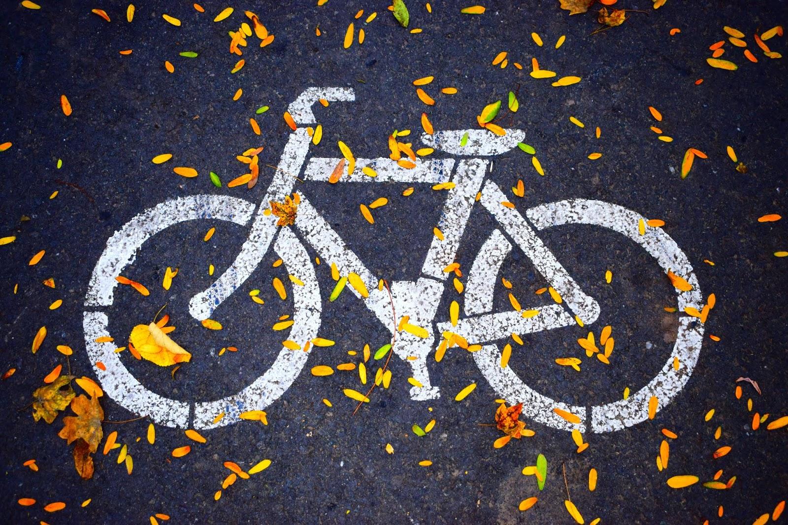 Einfach geht anders: Mehr als 10 Arten von Wegen für Radfahrer – Kennt ihr alle?